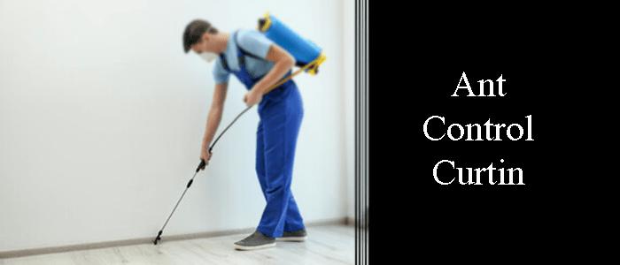 Ant Control Curtin
